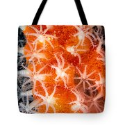 Coral, Close-up Tote Bag