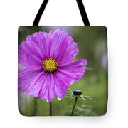 Cosmos Flower Tote Bag