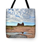 Courthouse Wash Tote Bag
