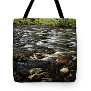 Creek, Smoky Mountains, Tennessee Tote Bag