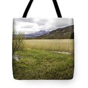 Cullin View Tote Bag
