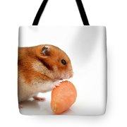 Curious Hamster 1 Tote Bag
