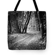 Curving Trail Entering Deciduous Forest Tote Bag