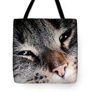 Cute Cat Close-up Portrait Tote Bag