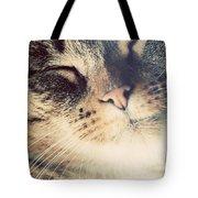 Cute Small Cat Portrait Tote Bag