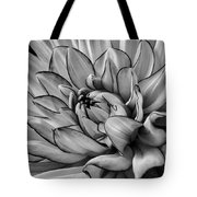 Dahlia In Black And White Close Up Tote Bag