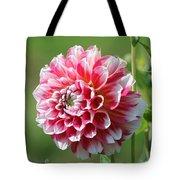 Dahlia Named Hawaii Tote Bag