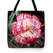 Dainty Dianthus Tote Bag