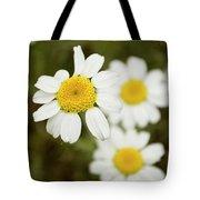 Daisies #1 Tote Bag