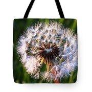 Dandelion In Nature Tote Bag