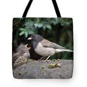 Dark-eyed Junco Mother And Baby Tote Bag
