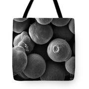 Debaryomyces Hanseni Yeast Tote Bag