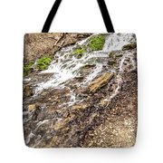 Decorah Iowa Waterfall Tote Bag