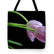 Delicacy Tote Bag by Tracy Hall