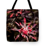 Desert Wildflower Tote Bag