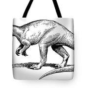 Dinosaur: Allosaurus Tote Bag