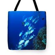 Diving Australia Tote Bag