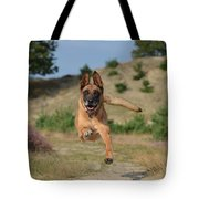 Dog Leaping Tote Bag