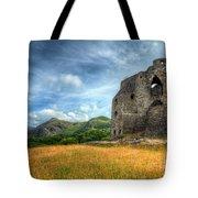 Dolbadarn Castle Tote Bag by Adrian Evans