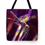 Dragonfly Insect Close  Tote Bag