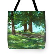 Dreaming On Fellows Lake Tote Bag