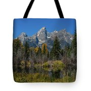 Dressed For Fall Tote Bag