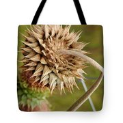 Dried Up Thistle Tote Bag
