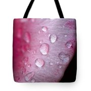 Droplets On Pink Tote Bag