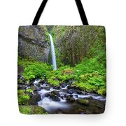 Dry Creek Falls Tote Bag