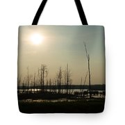 Dusk In The Wetlands Tote Bag