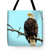 Eagle's View Tote Bag
