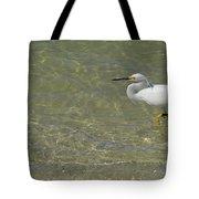 Eastern Great Egret In Florida Tote Bag