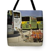 Egyptian Parking Lot Tote Bag