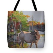 Elk Country Evening Tote Bag