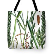 Elymus Repens, Commonly Known As Couch Grass Tote Bag