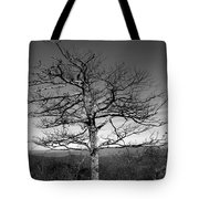 Embrace The Sky Tote Bag