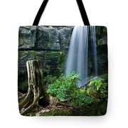 Enchanted Waterfall Tote Bag