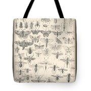 Entomology Tote Bag
