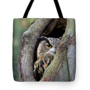 Eurasian Eagle-owl Bubo Bubo Looking Tote Bag by Rob Reijnen