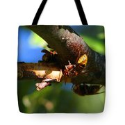 European Hornets Tote Bag