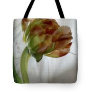Faded Love Letters6 Tote Bag