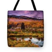 Fall Along Kebler Tote Bag