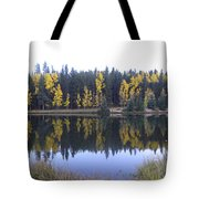 Potty Pond Reflection - Fall Colors Divide Co Tote Bag