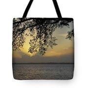 Farewell Sunset Tote Bag