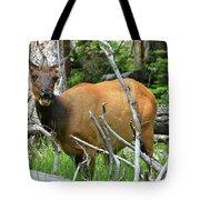 Female Elk Yellowstone Tote Bag