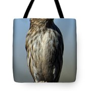 Female House Finch Tote Bag
