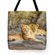 Female Lion And Cub Hdr Tote Bag
