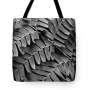 Fern Close-up Of Water Droplets Tote Bag
