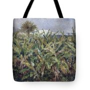 Field Of Banana Trees Tote Bag