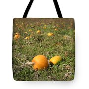 Field Of Pumpkins Tote Bag